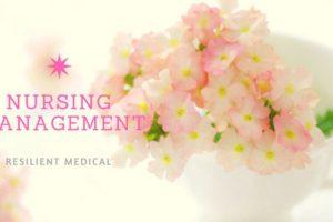 花瓶に差されたピンクの花