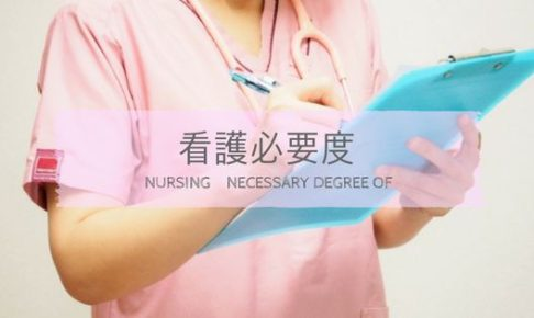 記録をとる看護師