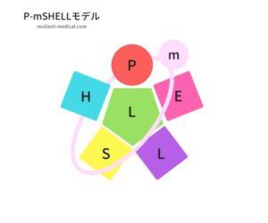 P-mSHELL分析を解説した図