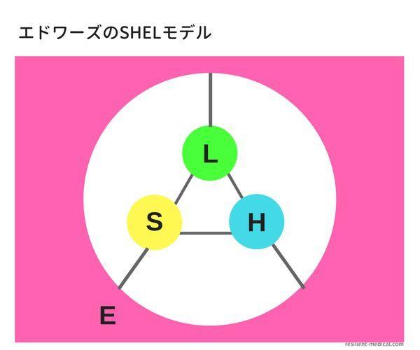 エドワーズのSHEL分析モデルを解説した図