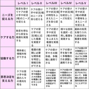 クリニカルラダーの項目表