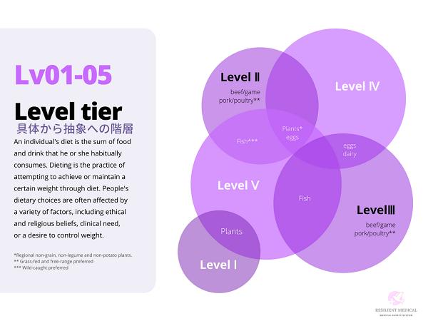 クリニカルラダーのレベルを説明した図