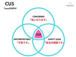 チームステップスのCUSを解説した図