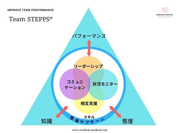 チームステップスの概要を解説した図