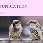 コミュニケーションをとる4羽のスズメ